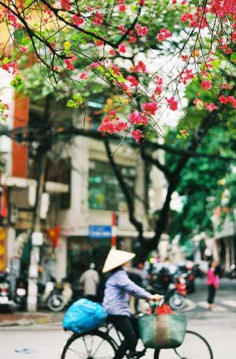 Northern Vietnam Weather