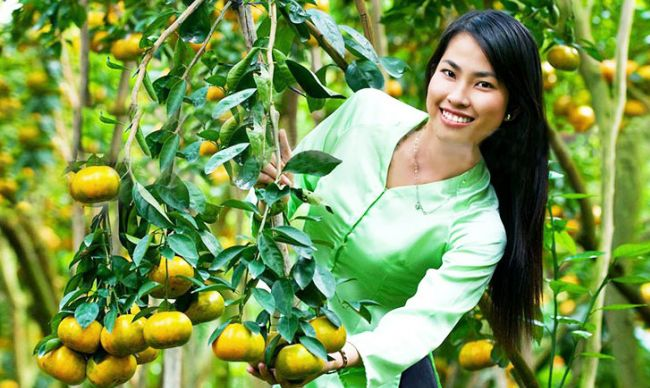 Culture of Orchards in Mekong Delta