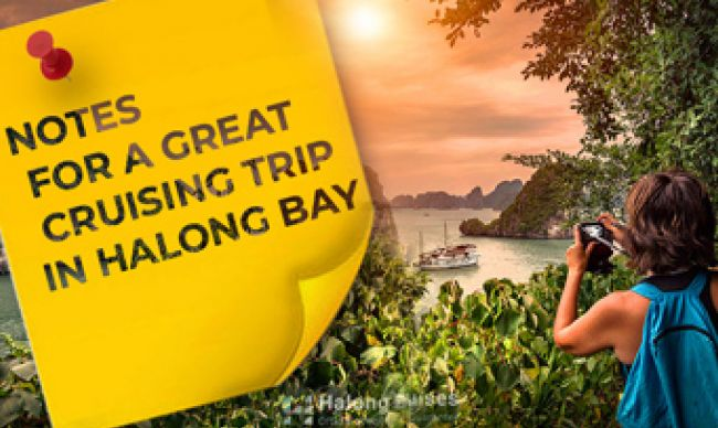 Notes for a Great Cruising Trip in Halong Bay