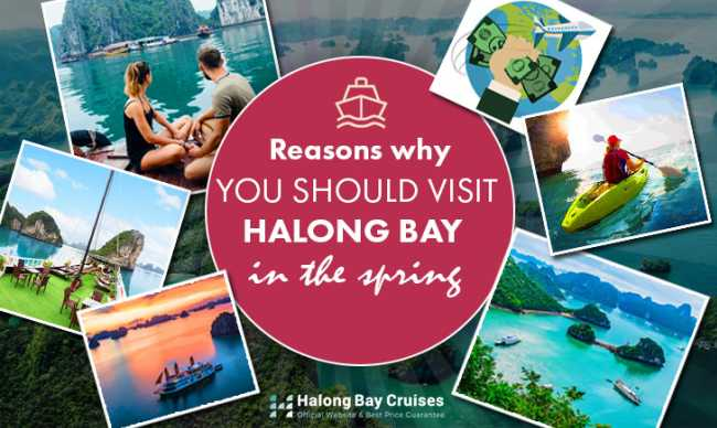 Reasons why you should visit Halong Bay in the spring