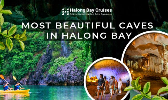 The Most Beautiful Caves You Should Not Miss in Halong Bay
