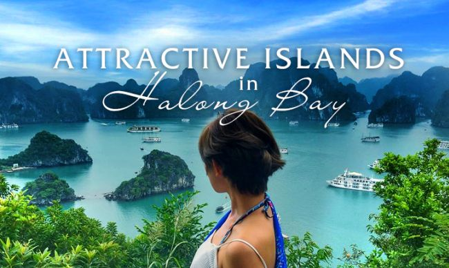 Top 5 Islands you should not miss in Halong Bay
