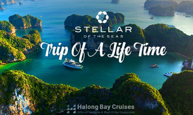 Trip of a lifetime with Stellar Of The Seas Cruise