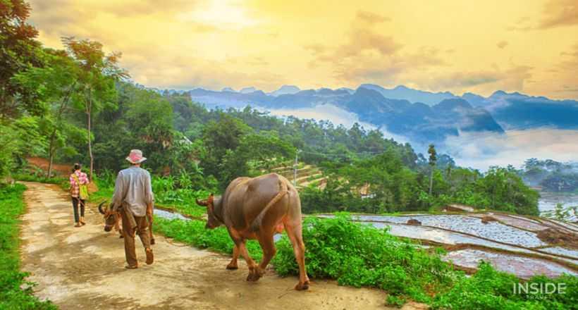 Mai Chau & Pu Luong Hidden Trail