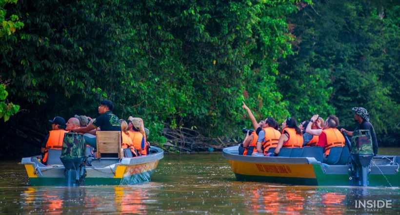 Discover Sandakan's Wildlife