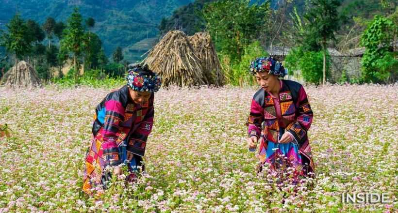 Discover the roof of Northern Vietnam