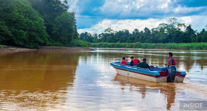 Explore the Natural Diversity of Borneo