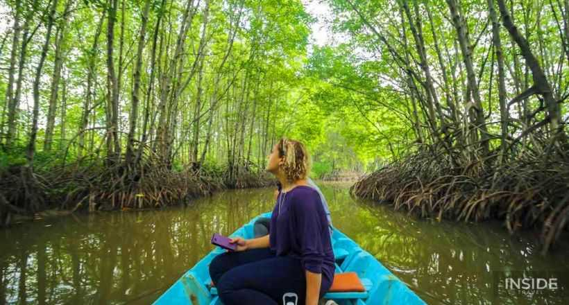 Can Gio Mangrove Biosphere Reserve day tour