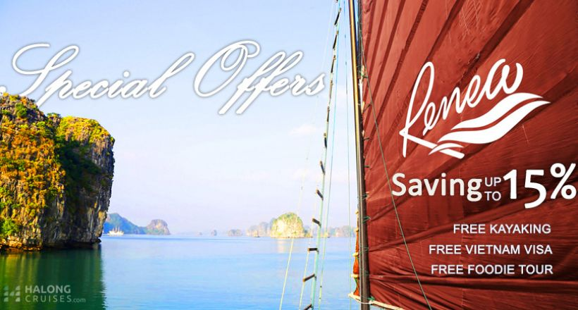 Renea Cruise
