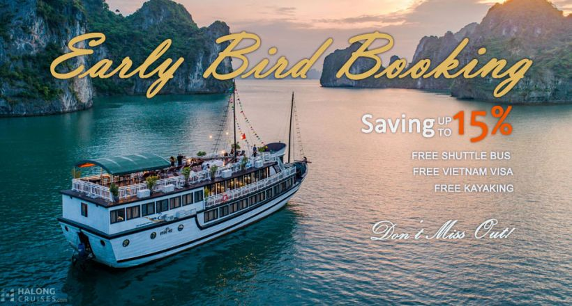 Swan Boutique Cruises