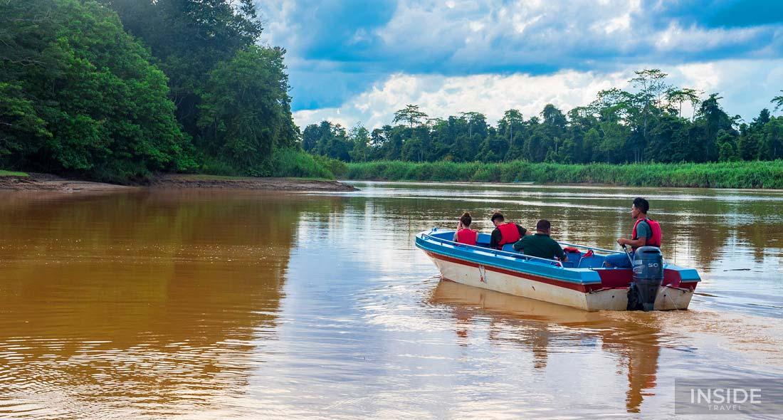 Explore the Natural Diversity of Borneo