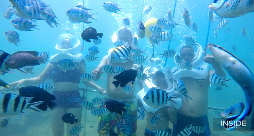 Experience Sea-walking at Cham Islands - SIC tour