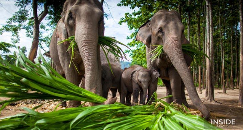 Fantastic Thailand Trip