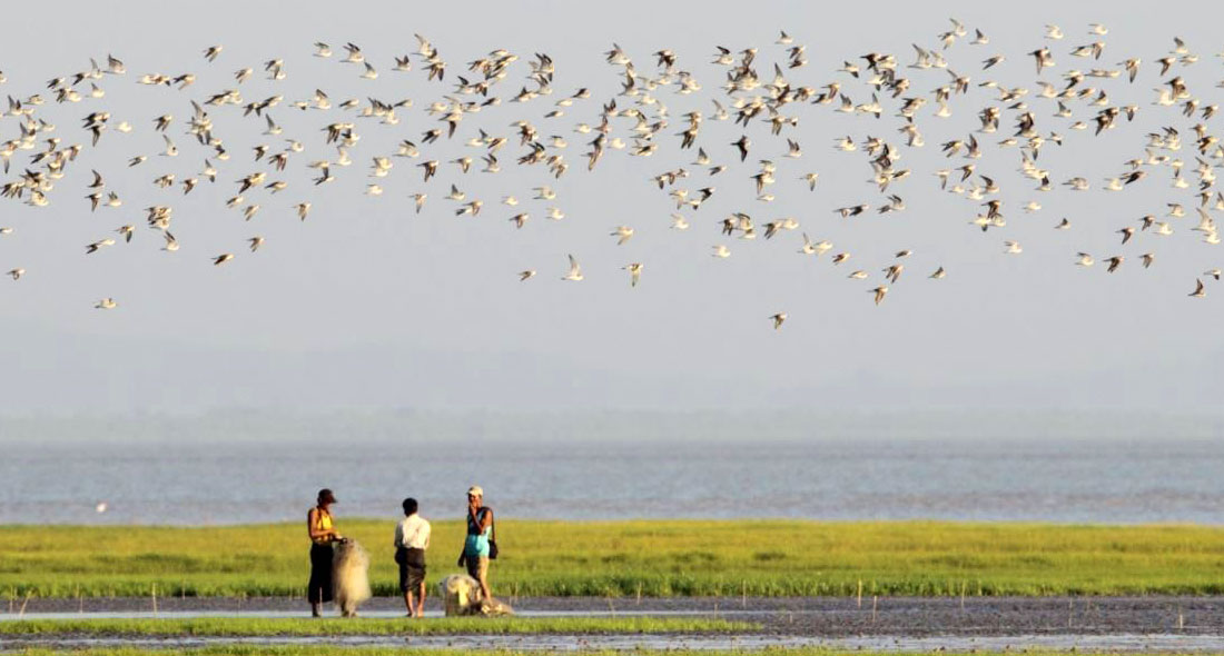 Find the right balance in nature in Moe Yun Gyi wetland