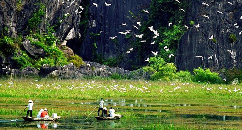 Van Long Nature Reserve Day Tour