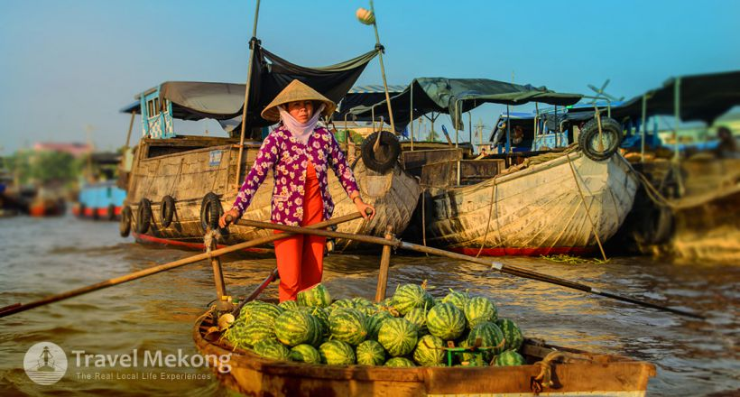 Discover the alluring Vietnam